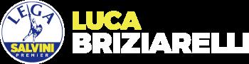 LUCA BRIZIARELLI - La rivoluzione del buonsenso